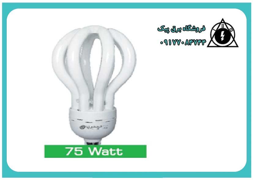 لامپ کم مصرف 75 وات( آفتابی -مهتابی)